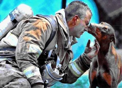 Dog licking face of dirty and tired fireman